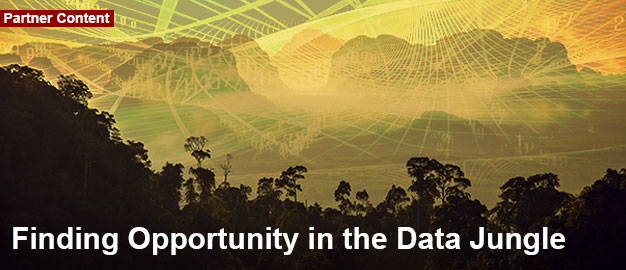 Finding Opportunity in the Data Jungle