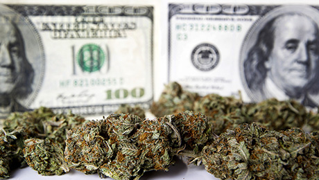 For Investors, Legalized Pot Remains a High-Risk Venture