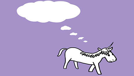 Is Unicorn Just Another Word for Subprime?