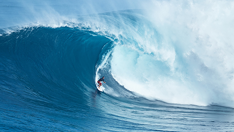 Riding the Wave of Low-Volatility Funds