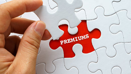 The Puzzling Equity Premium Quietly Leading You to Pitfall