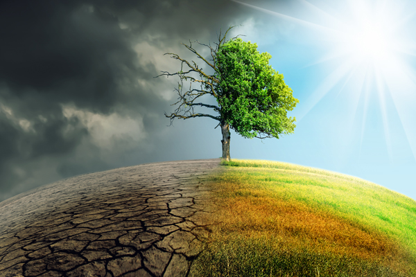 How Will Climate Change Impact Your Investments?