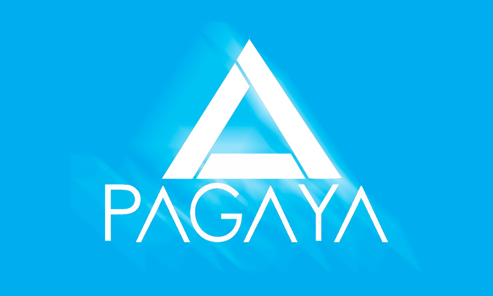 AI-Powered Asset Manager Pagaya Goes After Real Estate