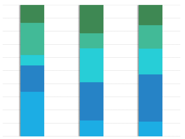 Global Comparison: Allocation of Time in Conference Calls