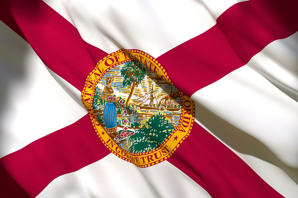 Florida State Pension Backs TPG's Rise Fund II