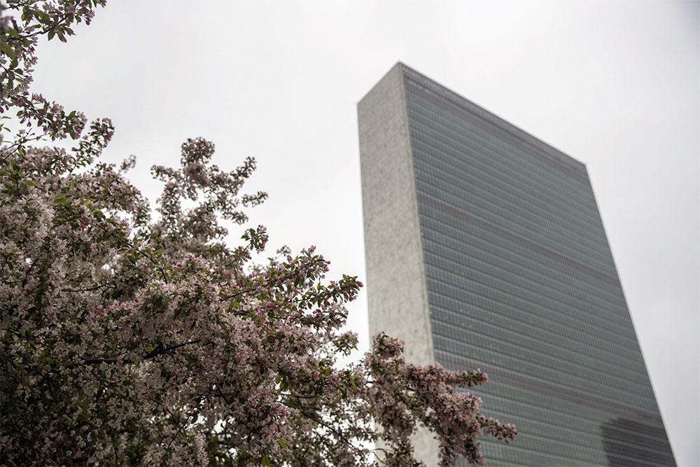 Signing the UN PRI Brings In More Money and Lowers Returns — But Does Little For ESG, Study Shows